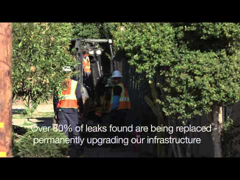 Leak Survey Program