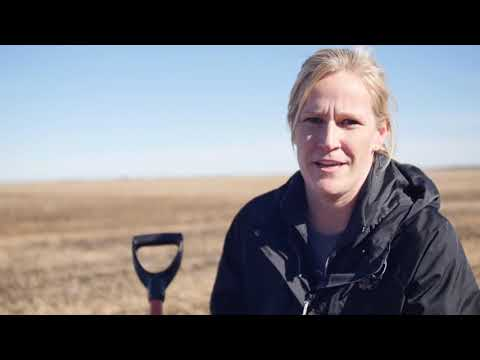 Soil Health Practices to Improve Trafficability