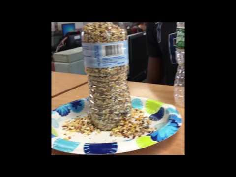 The water bottle bird feeder