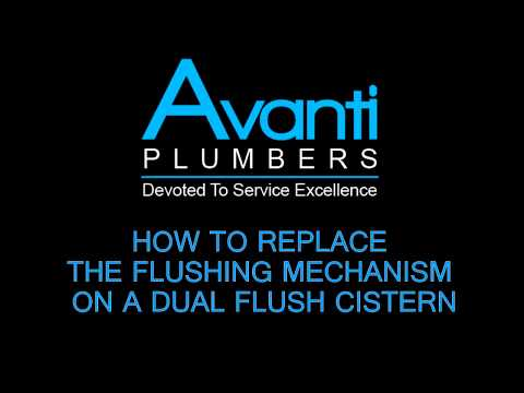 HOW TO REPLACE A FLUSHING MECHANISM ON A DUAL FLUSH CISTERN