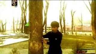 Zarifi Nemat - Bevafo