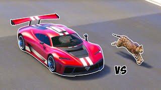 GTA 5 - CAN JAGUAR BEAT A CAR?