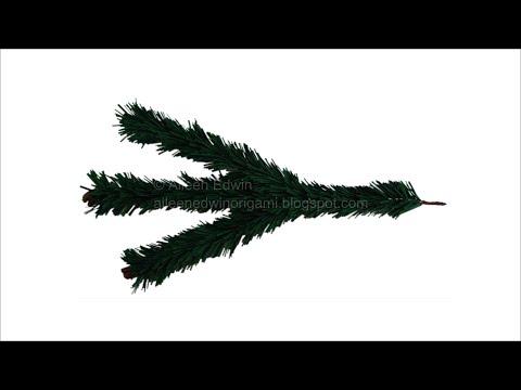 Fir Tree Branch Video Tutorial *HD*
