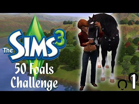 Let's Play: The Sims 3 50 Foals Challenge - Part #1 - Rules, Rules, and More Rules!