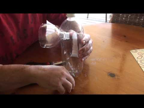 Easy and Cheap DIY Fruit Fly Trap