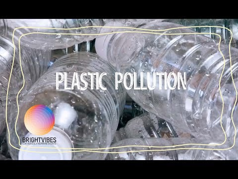 How to stop plastic pollution in 8 simple steps