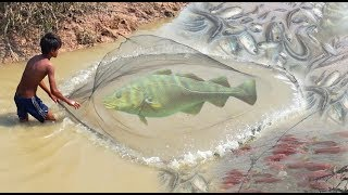 Cast Net Fishing - How To Catch Fish Using Cast Net In Cambodia