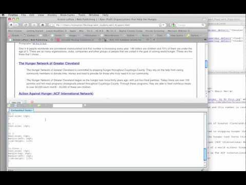 Using Web Developer Toolbar: CSS Validator