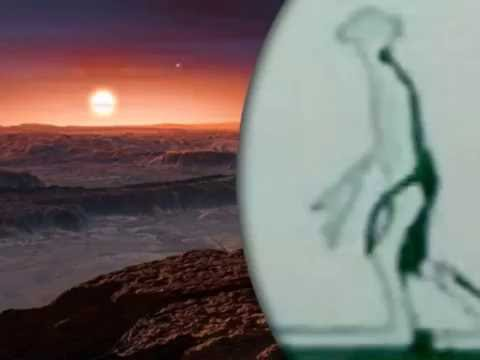 The eight foot aliens who live on Proxima b and visited our planet