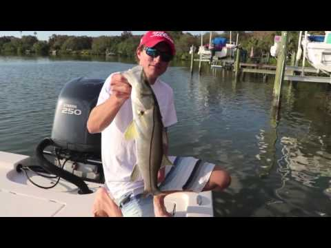 Winter Snook Fishing