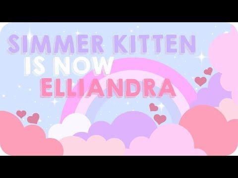 💗 NAME CHANGE 💗 Simmer Kitten to Elliandra 💗