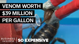 Download Why Scorpion Venom Is So Expensive | So Expensive Video
