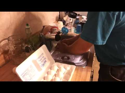 Long Term Egg Storage Without Refrigeration Experiment (Month 1)