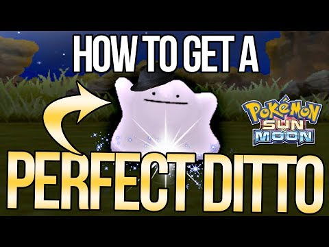 How to Catch a PERFECT Ditto - MAX IVs! - in Pokemon Sun and Moon! | Austin John Plays