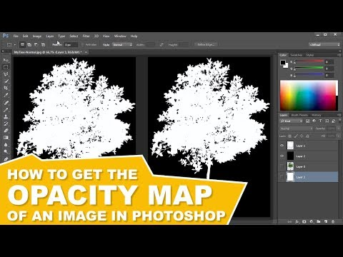 How to Create the Opacity Map (Alpha Channel) of an Image in Photoshop