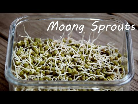 How to Sprout Moong (Mung) Beans At Home | Easy Kitchen Tips and Recipes By Shilpi