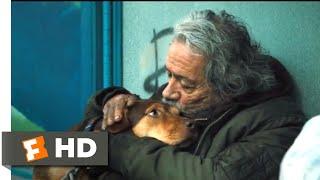 A Dog's Way Home (2018) - A Homeless Dog Scene (6/10)   Movieclips