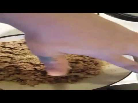Lasagna 4 Cheese - How To