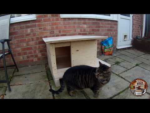 How to make cat house - Willmore's world of wood #41