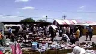 la pulga del 175 en dallas texas music jinni