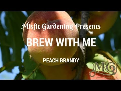 How To Make Peach Brandy