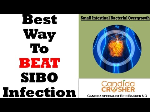 How To Effectively Treat A SIBO Infection