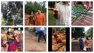 My Sunday vlog A Trip to Hanu Reddy Mango Tourism/Mango farm/The Great Mango Festival  23/6/19
