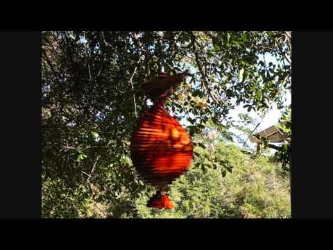 Wood Wind Spinner for Linnea.