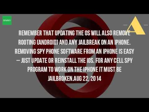 How Do You Remove Spyware From Your Cell Phone?