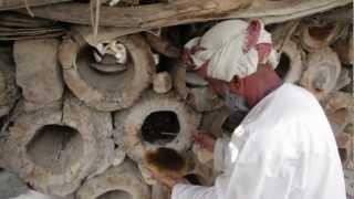 Visit the Traditional Beekeepers in Wadi Bani Awf (Oman)