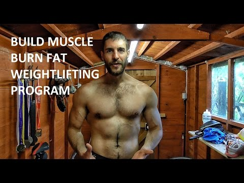 Build lean muscle and shred fat by folowing a structured weightlifting program