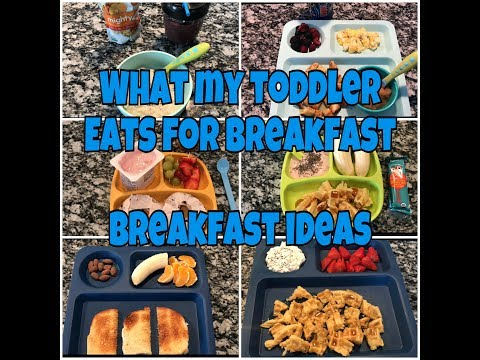 What my toddler ate for breakfast/ toddler breakfast ideas