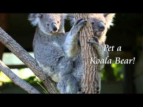 Australia, New Zealand & Fiji with Fun For Less Tours