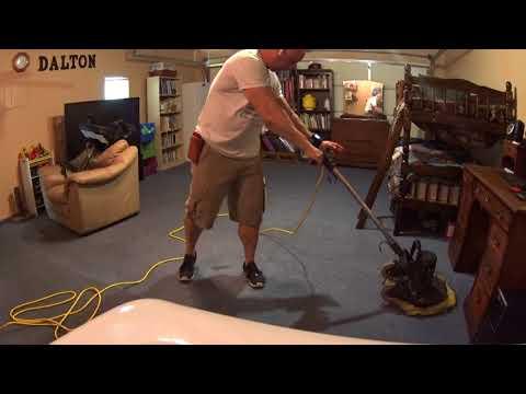 Cats love the carpet guy  Carpet vlog