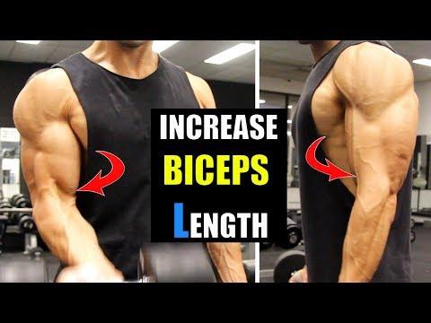 Grow Biceps length Fast- Fill Bicep & Forearm GAP(बाइसेप की लम्बाई बढ़ायें)