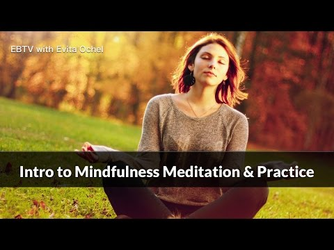 Introduction to Mindfulness Meditation & Guided Practice