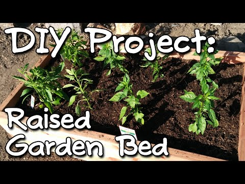 Raised Garden Bed using Pocket Screws