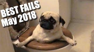 BEST FAILS! Epic Fails   You