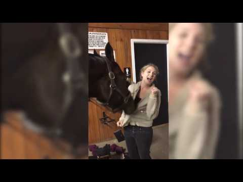 Xxx Mp4 Horse Plays With Girl 39 S Hoodie 3gp Sex