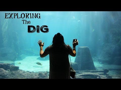 Exploring the Dig at Atlantis!