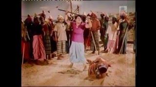 padakotti | MGR fight scene | படகோட்டி  படத்தின் சண்டை காட்சிகள்