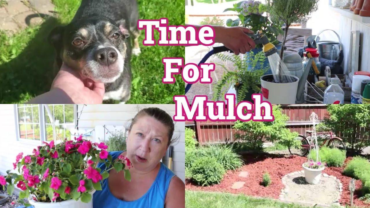 Time For Mulch!    Gardening 2021 Episode #5
