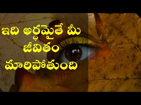 THE SUCCESS HABIT OF A WINNERS MINDSET|HOW TO DEVELOP A CONSISTENT WINNING MENTALITY | IN TELUGU