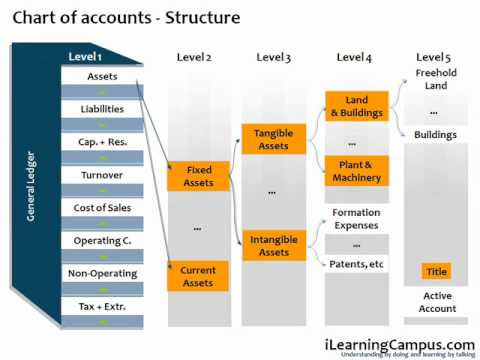 SAP Financial Accounting (FI) Chart of Accounts