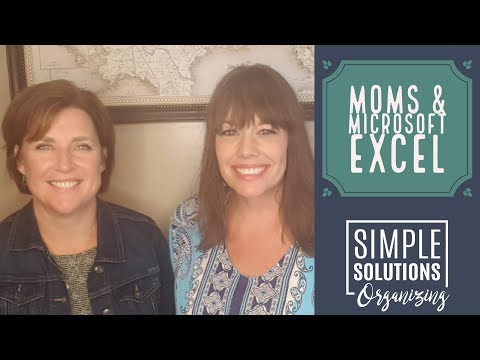 Moms & Microsoft Excel - Organizing Medical & Vet Records