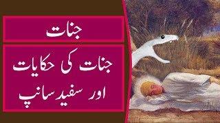 Jinnat history in urdu | Story of jinnat | Islamic waqiat