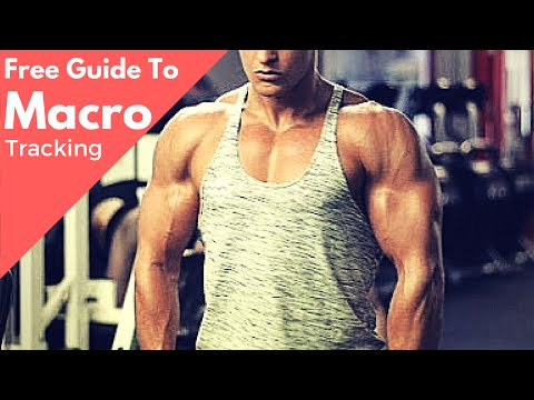 How To Track Your Macros