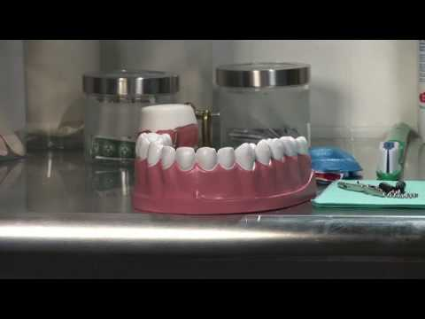 Dental Health : How to Properly Floss Your Teeth