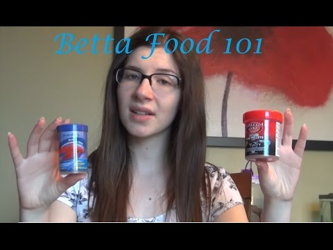 Betta Food 101 What I Feed And Why