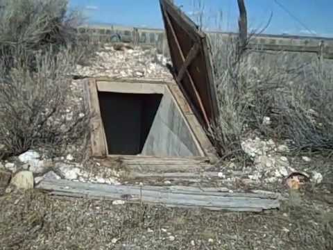 Cool Root Cellar 2 of 2